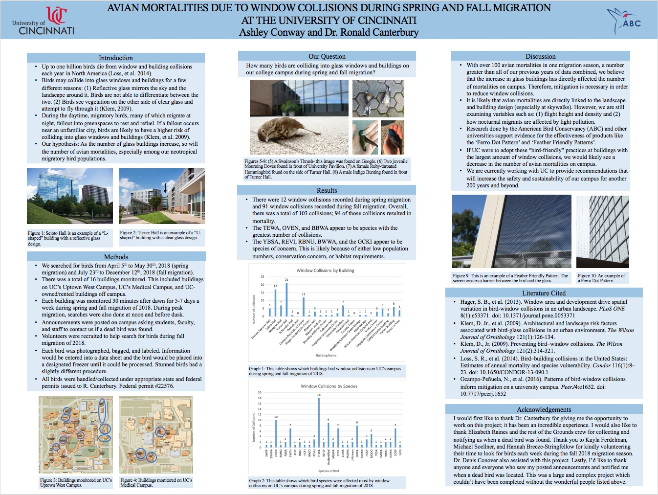 Avian mortalities due to window collisions during spring and fall migration at the University of Cincinnati